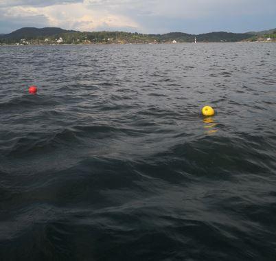 Fangstredskap fiske